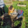 Les enfants de Gaston Variot sont allés jardiner!